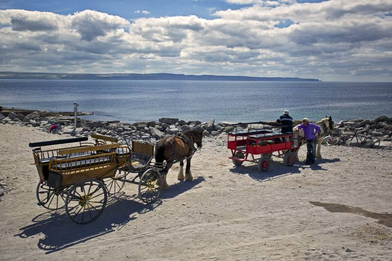 Taking a tour of Inisheer Aran Islands on a horse and cart